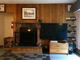 "55"" Flat Screen and free firewood"