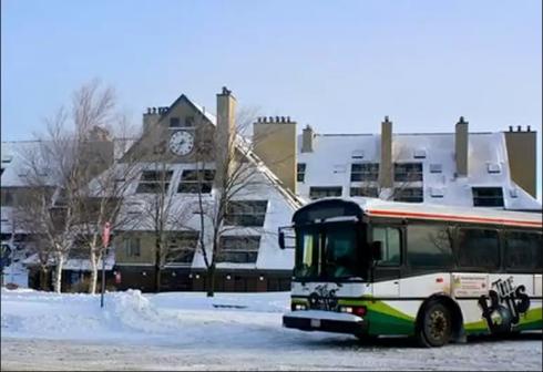 Ski Shuttle to the Slopes